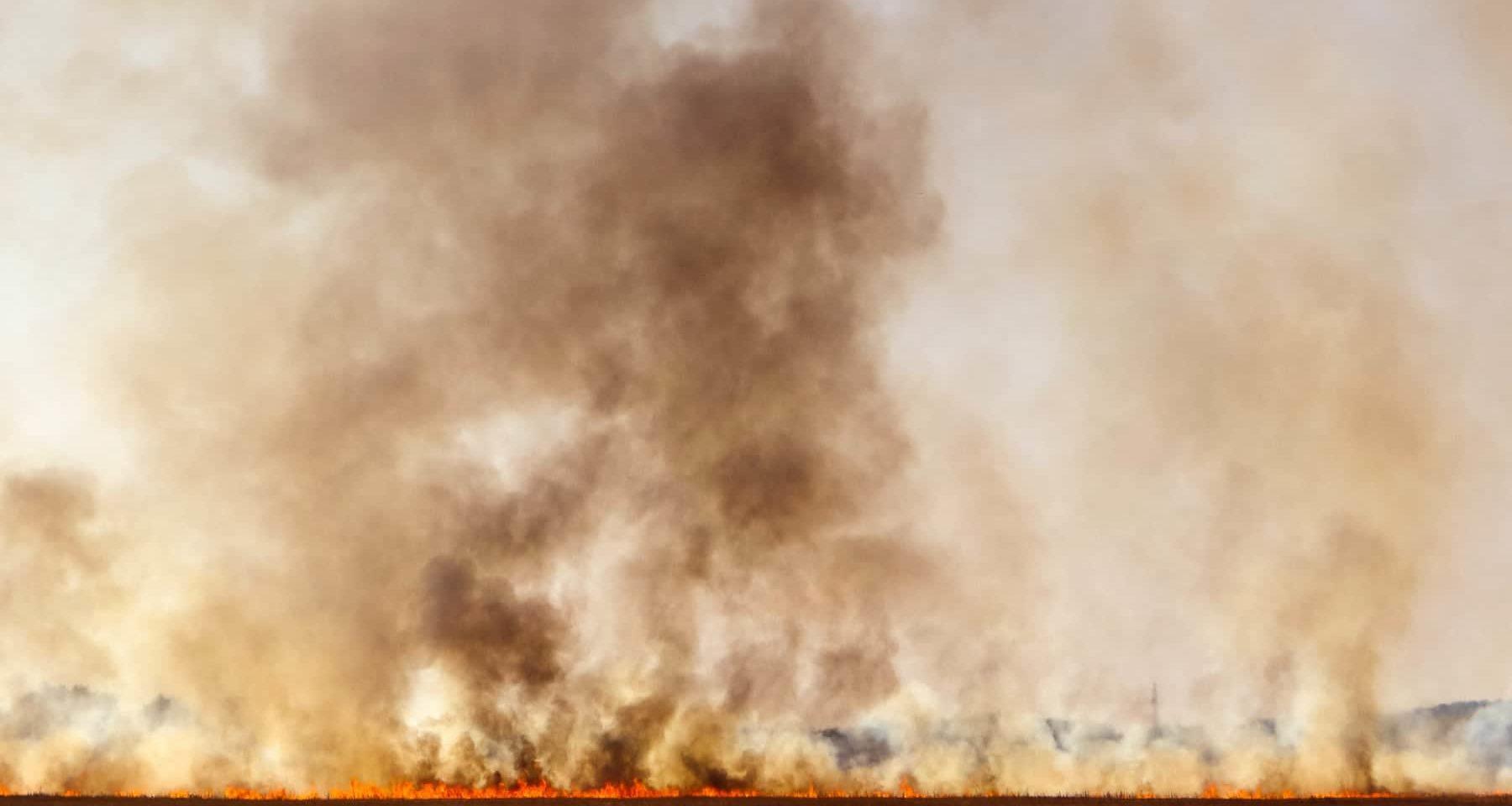 Verbrannte Erde Hinterlassen